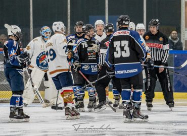 Sonntag: Bisons bei den Black Eagles